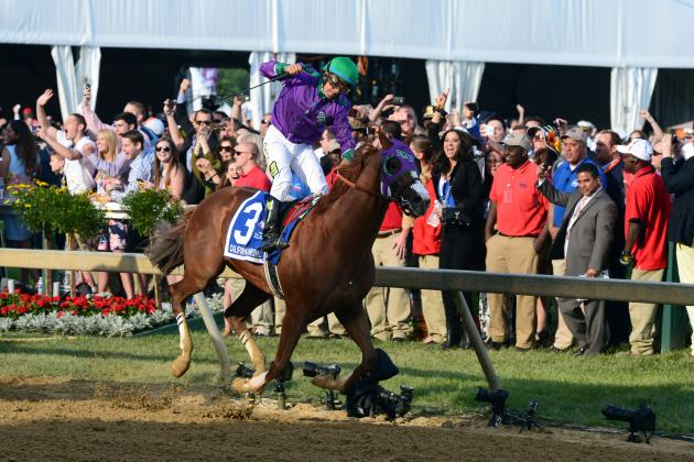 Belmont Stakes Odds 2014: Post Positions Info and Vegas Lines for All Horses