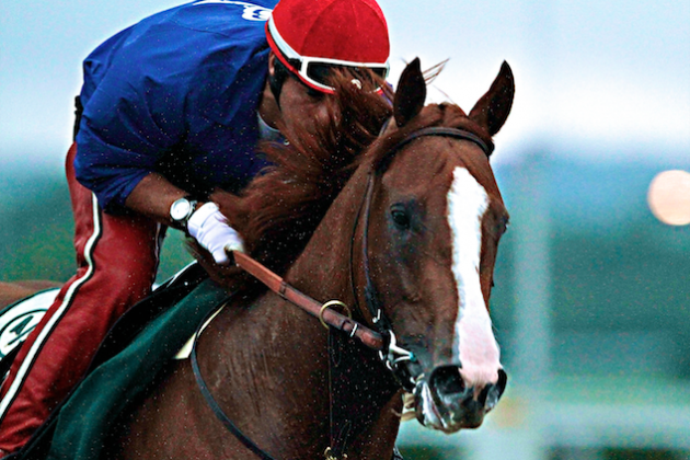 2014 Belmont Stakes Contenders: The Blueprint to Beat California Chrome