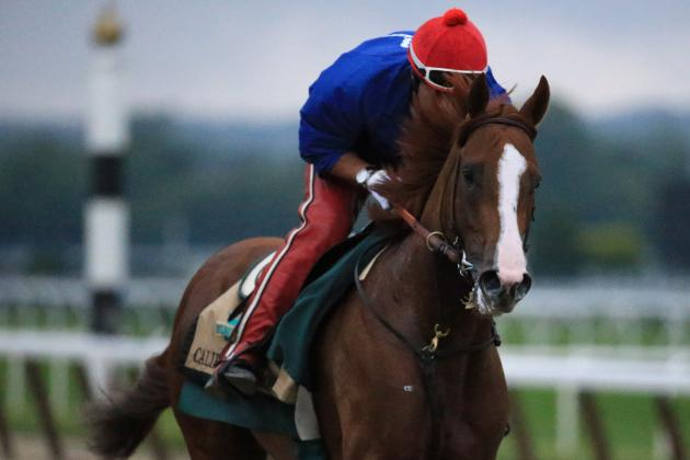 Triple Crown 2014: Odds and Predictions for Order of Finish at Belmont Stakes