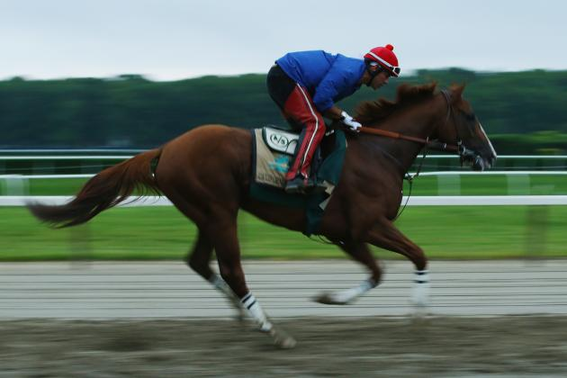 Belmont Stakes Picks 2014: Predictions for California Chrome and Race-Day Odds