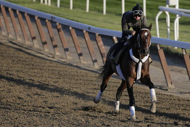 Belmont Stakes Odds 2014: Triple Crown Outlook and Race-Day Predictions