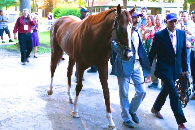What's Next for California Chrome After 2014 Triple Crown Miss?