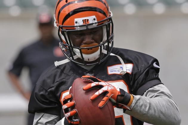 Newman Embraces Role as Bengals Sage