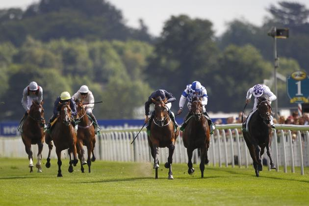 Queen Anne Stakes 2014: Date, Post Positions, Odds, Runners and More