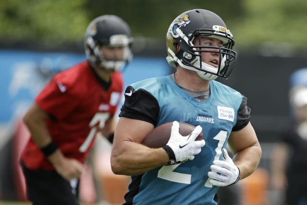 Expect Big Things from Jacksonville Jaguars RB Toby Gerhart in 2014