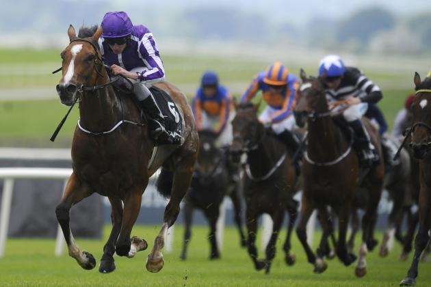 Irish Derby 2014 Results: Winner, Payouts and Order of Finish