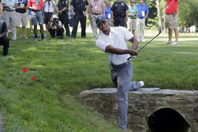 Bubba, Martin, Tiger in Top 9 Performances on the PGA Tour in 2014