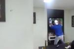 Brazil Fan Celebrates Win, Accidentally Breaks TV