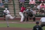 Minor-Leaguer Hits Bird with Pitch