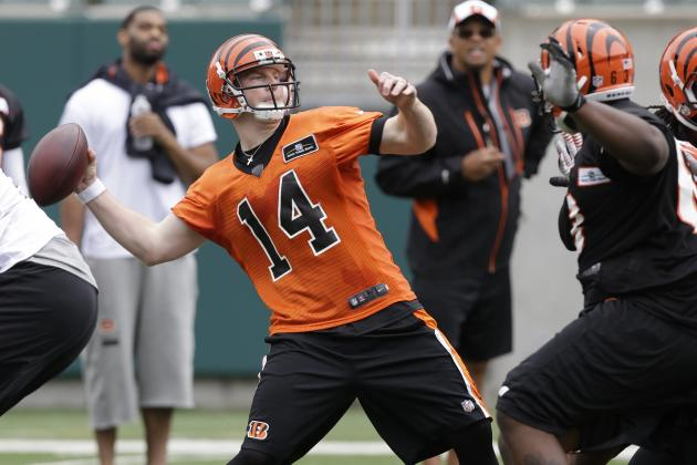 Will Bengals Earn a Fourth Consecutive Playoff Appearance?