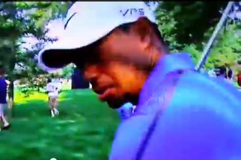 Tiger Woods Swears at Cameraman During WGC-Bridgestone Invitational