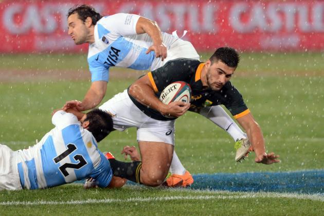 Springboks Battle Past Plucky Pumas