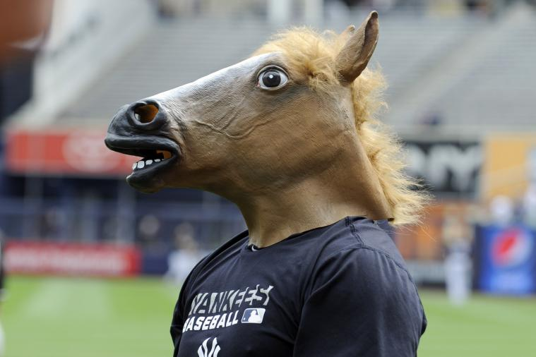 Yankees Credit 5-Game Winning Streak to Reliever Wearing Horse Mask