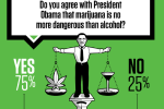 Survey: NFL Players Say Alcohol More Dangerous Than Weed