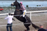 Horse Scares Jockey with Huge Jump
