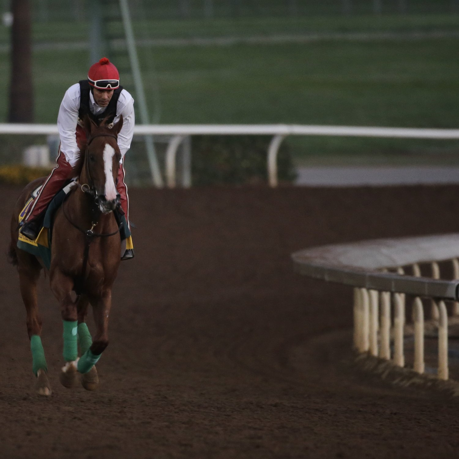 Breeders Cup 2014 Post Positions Horse Odds Prize Money
