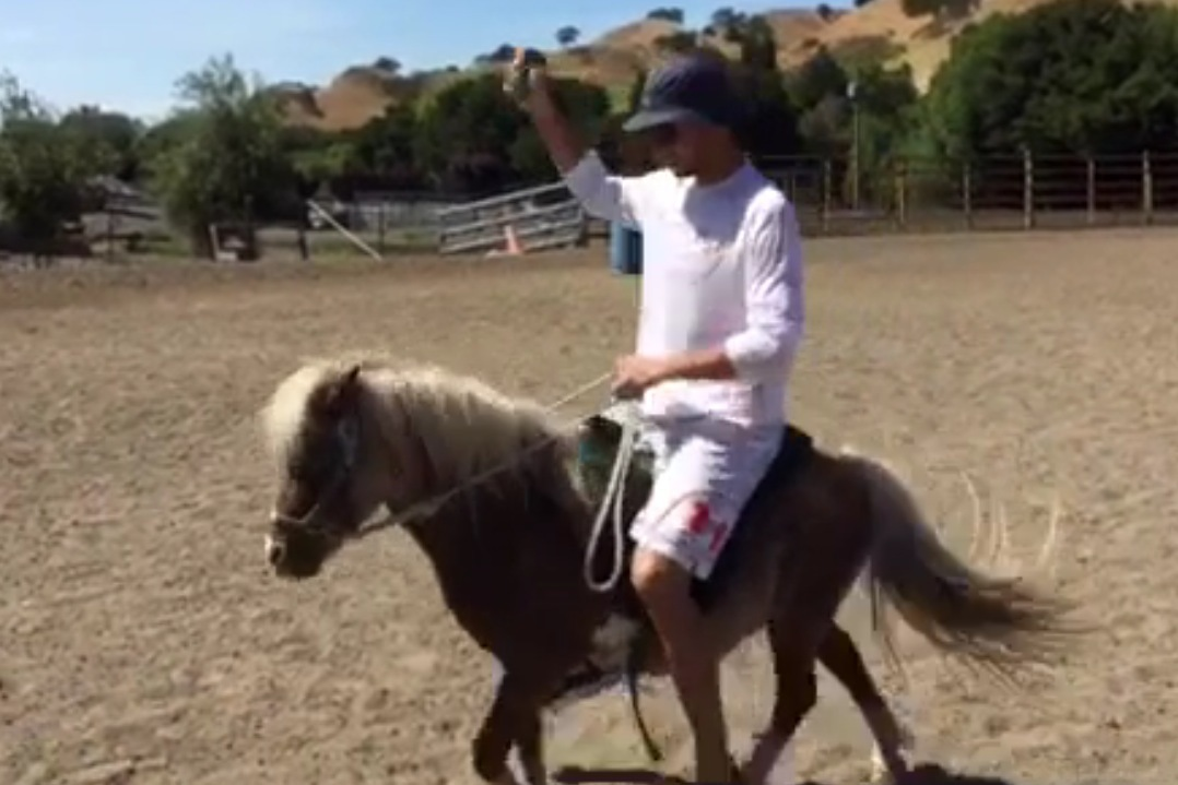And Here's Stephen Curry in a Bucket Hat Riding a ...Full Grown Mini Horse