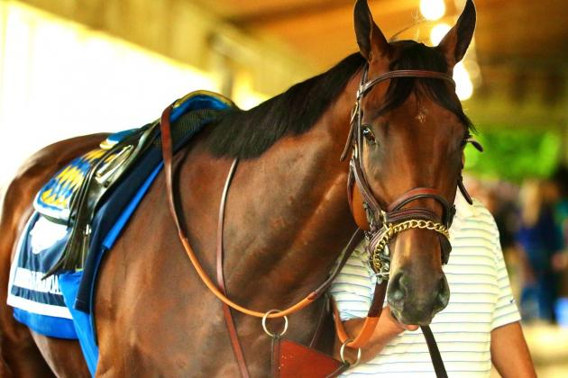 American Pharoah's Triple Crown Bid: Inside the Belmont Stakes' Numbers