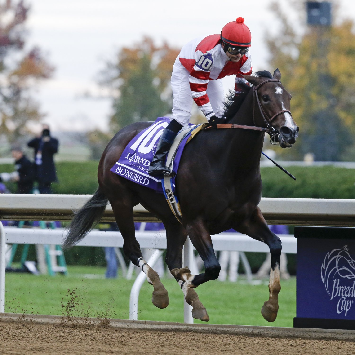 Breeders Cup 2015 Results Tracking Winners And Prize