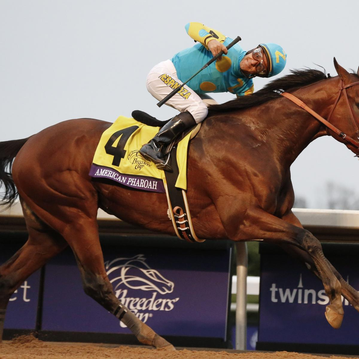 Breeders Cup 2015 Results Twitter Reacts To Thrilling