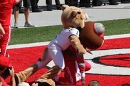 15 Most Savage Mascot Fights in Sports History