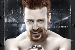 WWE: Preview of the Elimination Chamber PPV