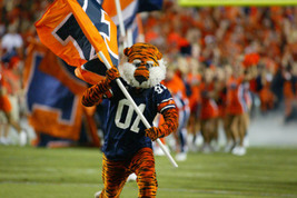 The 23 Dumbest Mascots in College Football