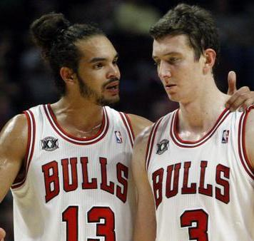 Joakim Noah vs. Omer Asik: Who Should the Chicago Bulls Start at Center?