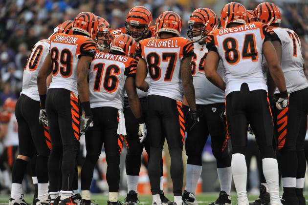 Cincinnati Bengals: Four Home Games Worth Seeing in Person in 2012