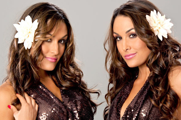 WWE: 10 Best Things About the Bella Twins
