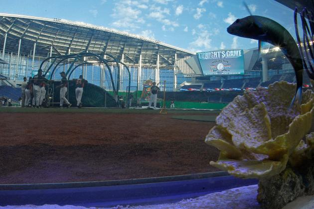 Miami marlins fish tank and the most ridiculous gimmicks for Marlins fish tank