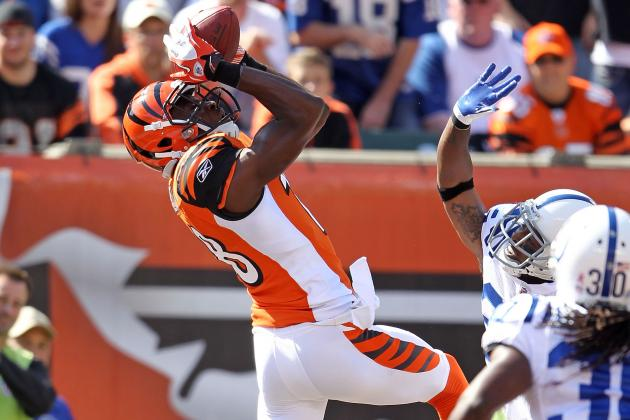 Cincinnati Bengals: 12 Wideouts, 6 Spots, 1 Question