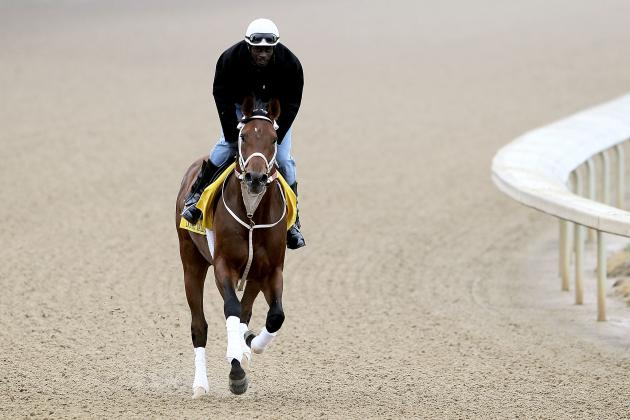 Kentucky Derby Field 2012: Who, Outside of the Favorites, Will Contend?