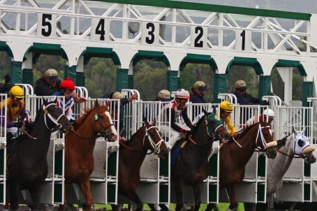 Kentucky Derby 2012: Bold Predictions for This Year's Triple Crown
