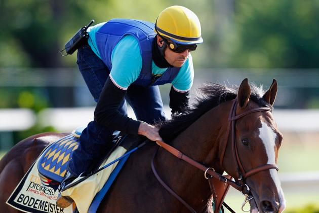 Bodemeister: What Experts Are Saying About the Preakness 2012 Contender