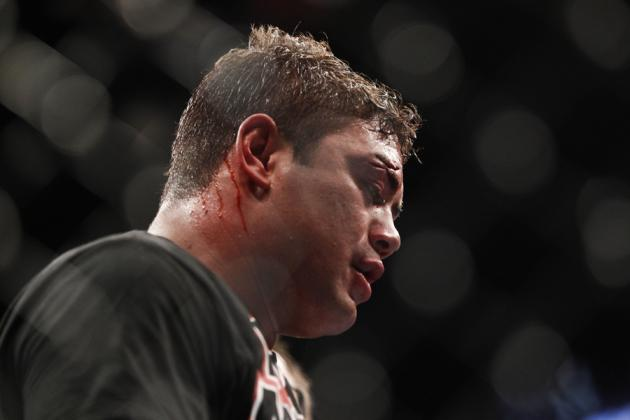 UFC 146 Results: 5 Fights for Shane Del Rosario to Take Next