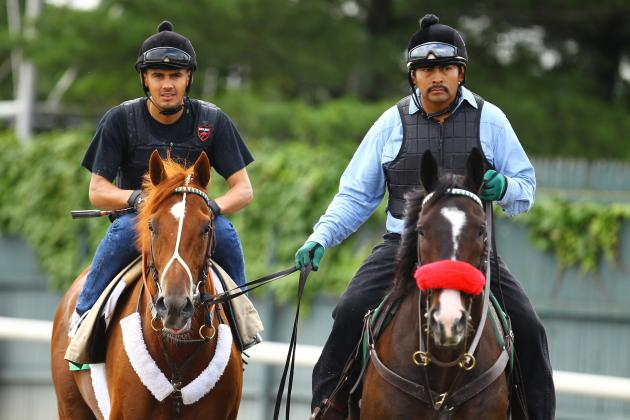I'll Have Another: A Pictorial Tribute to Triple Crown Contender