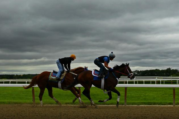 Belmont Stakes 2012 Odds: Betting Guide to Favorites and Dark Horses