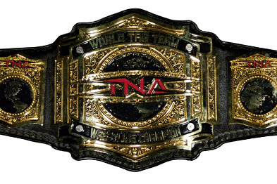 Wrestling Gold: The History of the TNA World Tag Team Championship