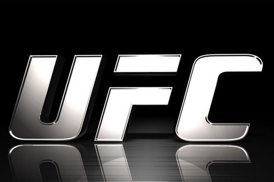The Future of the Ultimate Fighting Championship