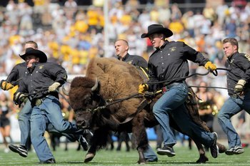 College Football's Top 10 Best Live Mascots