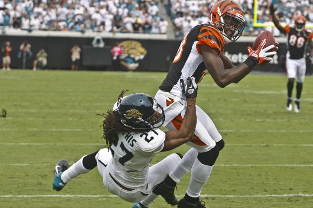 Jacksonville Jaguars Training Camp 2012: 6 Guys Who Could Be on the Hot Seat