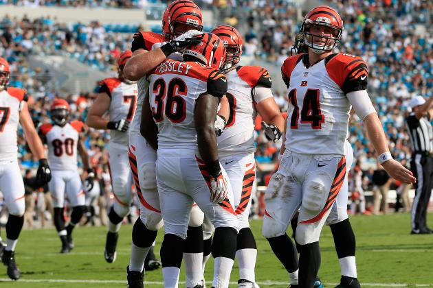 Cincinnati Bengals: 1st-Quarter Grades for the 2012 Season