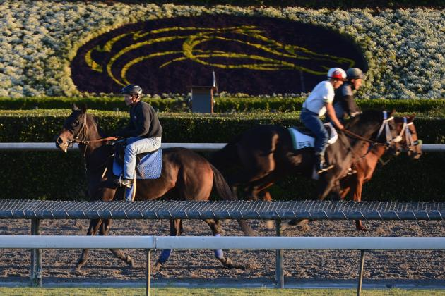 Breeders' Cup 2012 Post Positions: Morning Line Odds for Entire Lineup