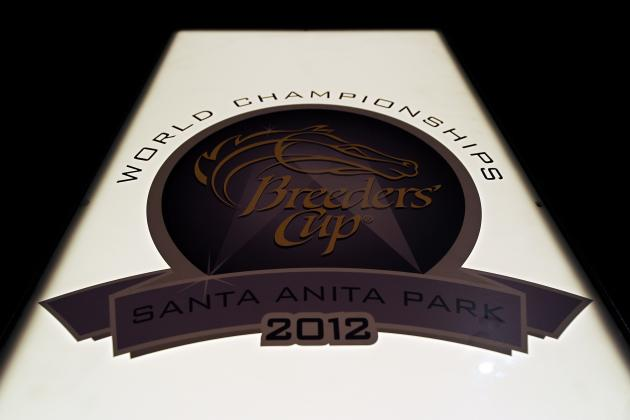 Breeders' Cup 2012 Odds: Betting Guide to Favorites and Dark Horses
