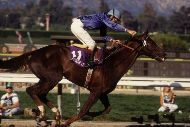 Breeders' Cup Santa Anita 2012: Long Shots with the Best Odds to Win