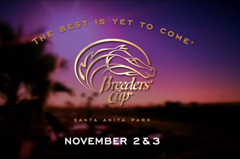 2012 Breeders' Cup Contenders: Handicapping the Entire Field