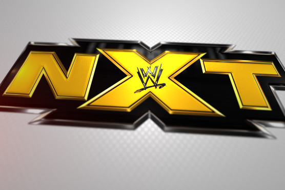 WWE NXT: Who Are the Most Impressive Wrestlers So Far Since the Format Change?