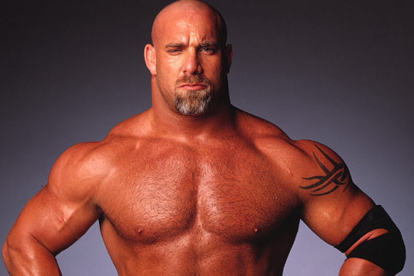 WWE '13: 10 Legends Who Should Be in WWE '14 Next Year
