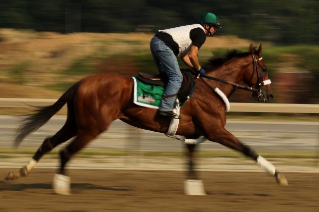 Breeders' Cup Santa Anita 2012: Latest Odds on Mucho Macho Man, Dullahan & More